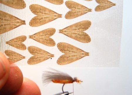 Tying Caddis Fly - Step 6