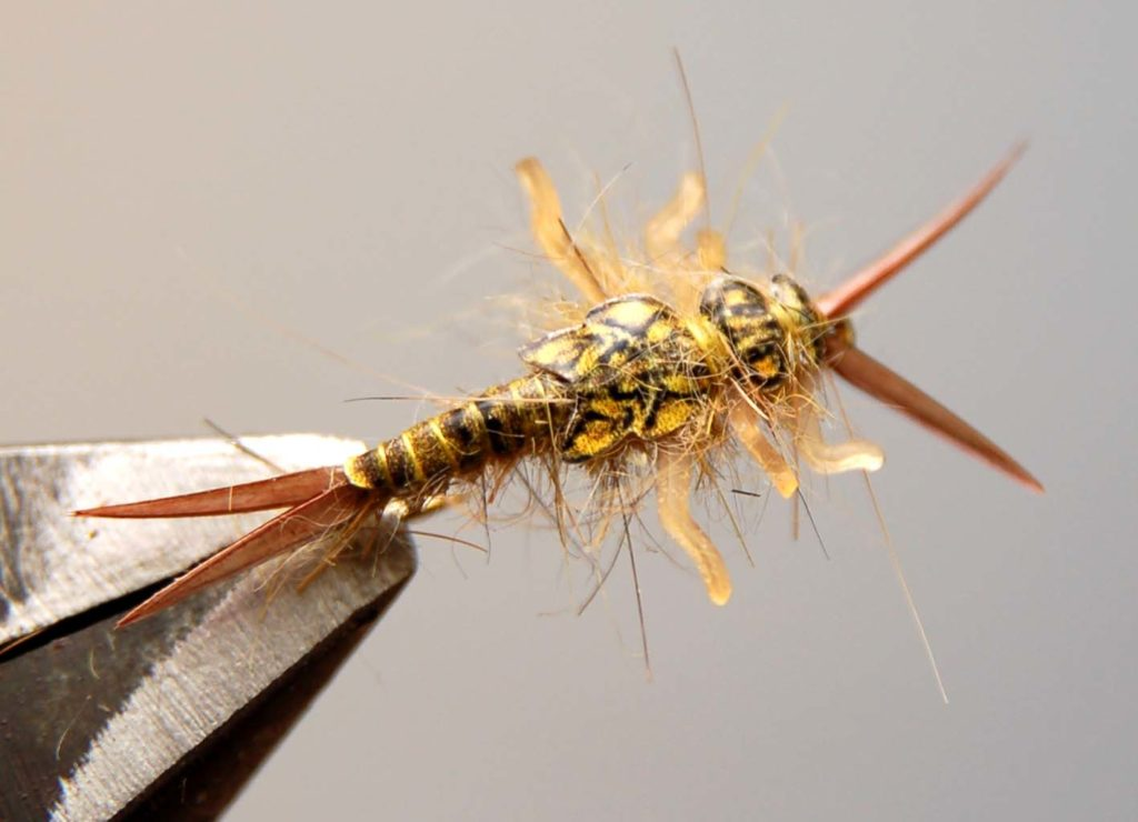 How to Tie Realistic Stonefly Nymph - Step 20