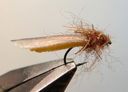 How to tie realistic stonefly - Tying Stonefly - Step 12